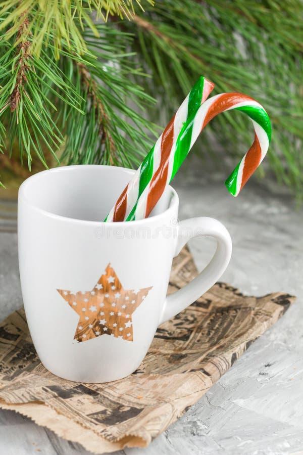 Schale unter Weihnachtsbaum lizenzfreie stockfotos