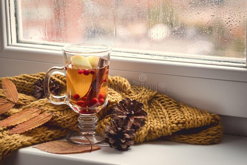 Schale von heißem AutumnTea mit Apple-Beere und -zimt nahe einem Fenster-Gelb-Schal-heißen Getränk für Autumn Cold Rainy Days Hyg lizenzfreies stockbild