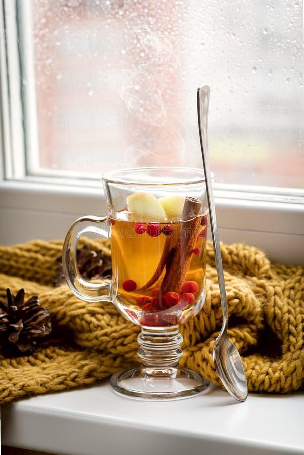 Schale von heißem AutumnTea mit Apple-Beere und -zimt nahe einem Fenster-Gelb-Schal-heißen Getränk für Autumn Cold Rainy Days Hyg stockfotografie