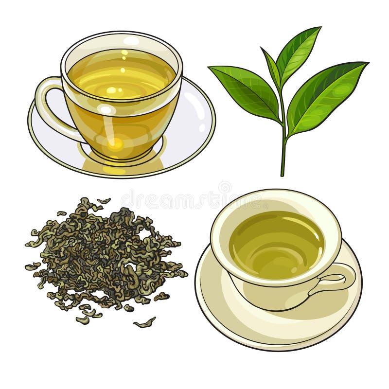 Schalen-, frische und trockeneblätter des grünen Tees stock abbildung