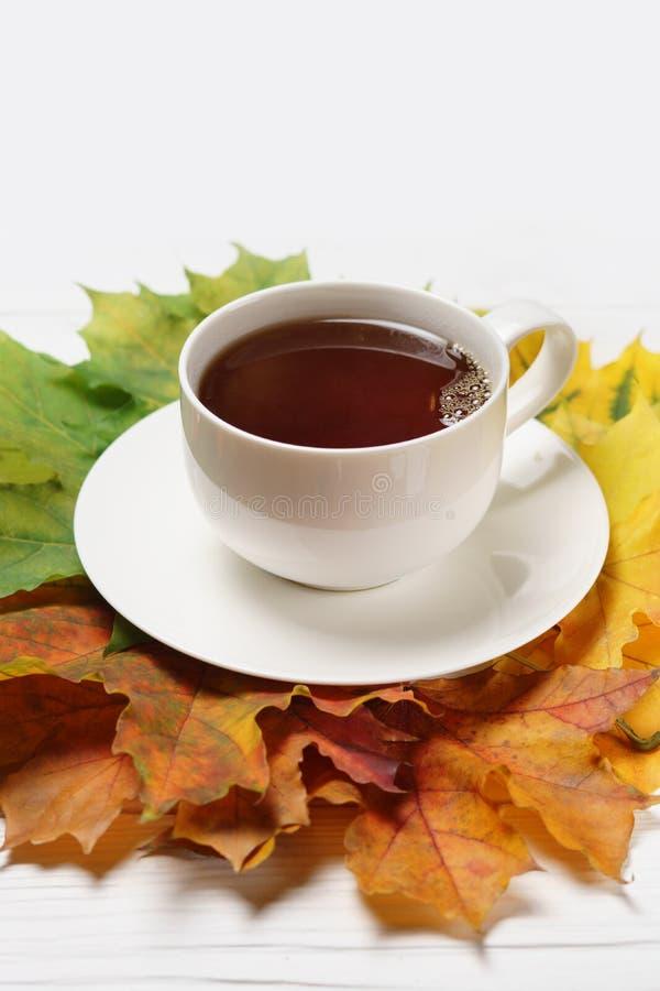 Schalen T-Stück und Herbstfallblätter auf weißem Holz lizenzfreie stockfotos
