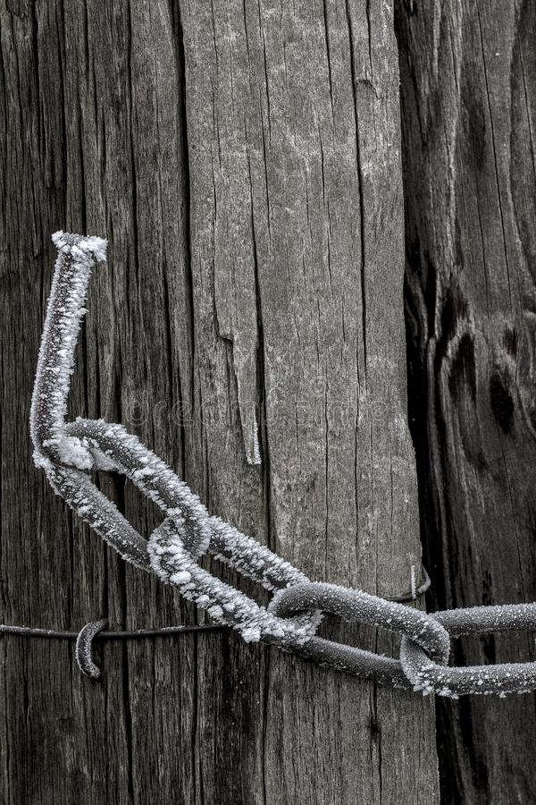Schalmen, Chain links. Bevroren schalmen, frozen Chain links royalty free stock photography