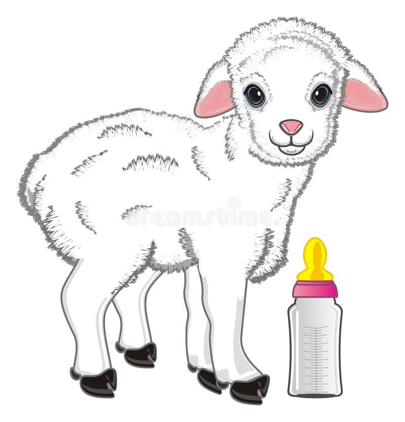 Schapen en melk vector illustratie