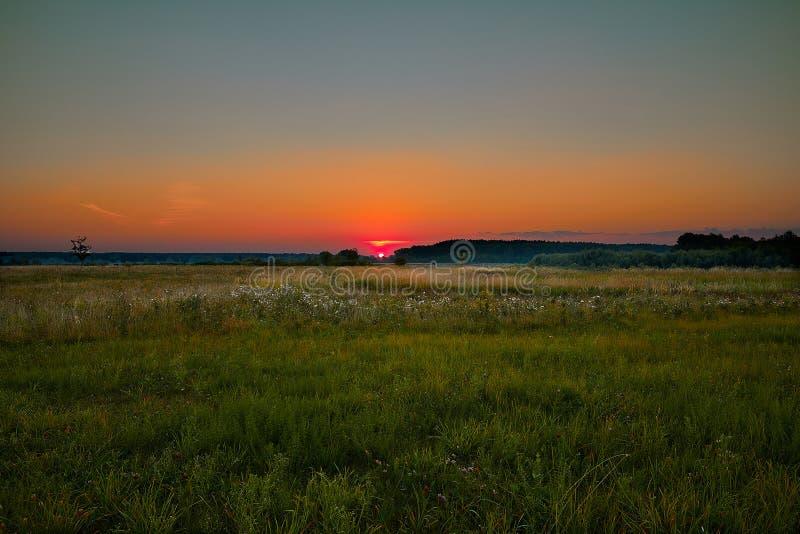 Scharlakansröd gryning mjuka färger, fält, skog, sol, sommar royaltyfri fotografi