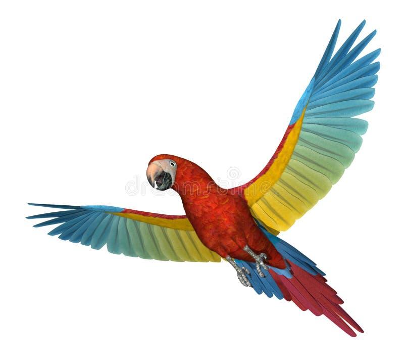 Scharlaken Ara die 2 vliegt stock illustratie