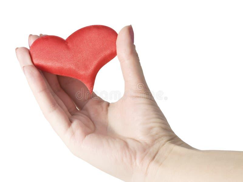 Scharlaken hart ter beschikking stock foto's