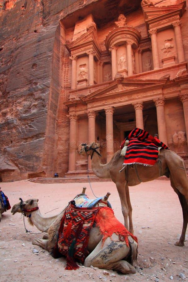 Schatkist in Petra stock foto