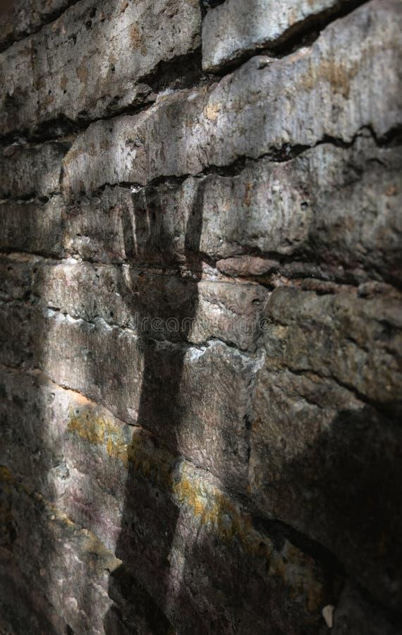 Schatten auf einer Ziegelsteinwand lizenzfreie stockfotografie