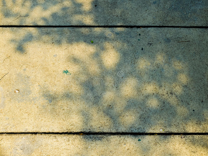 Schatten des Baums aus den Zementgrund lizenzfreie stockbilder