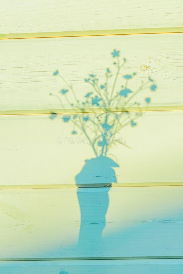 Schatten des weiblichen Handholdingblumenstraußes der schönen Butterblumeblumen stockbilder