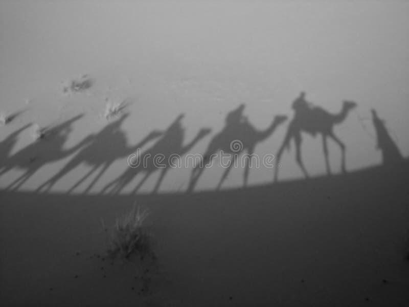 Schatten eines Wohnwagens in B/W stockfotografie
