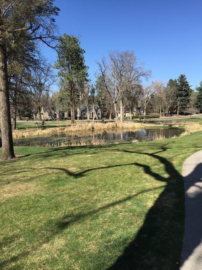 Schatten im Park stockbilder