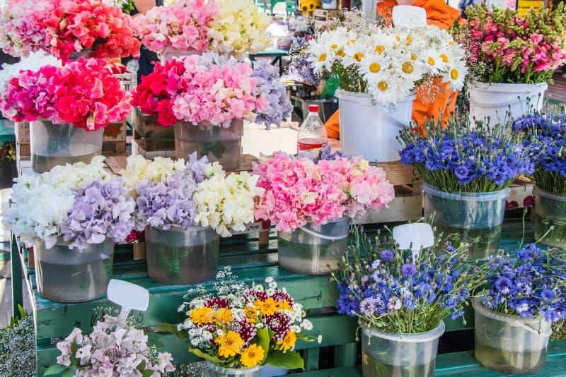 Schatten, kamille, korenbloem en andere bloemen stock afbeeldingen