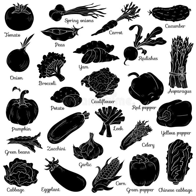 Schatten stellte mit Gemüse, Vektorkarikaturaufkleber ein lizenzfreie abbildung