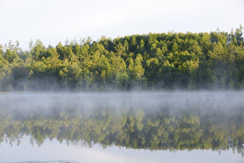 Schatten und Nebel lizenzfreie stockbilder