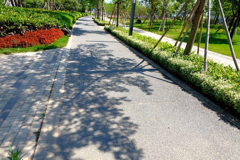 Schatten unter Sonnenschein lizenzfreie stockbilder