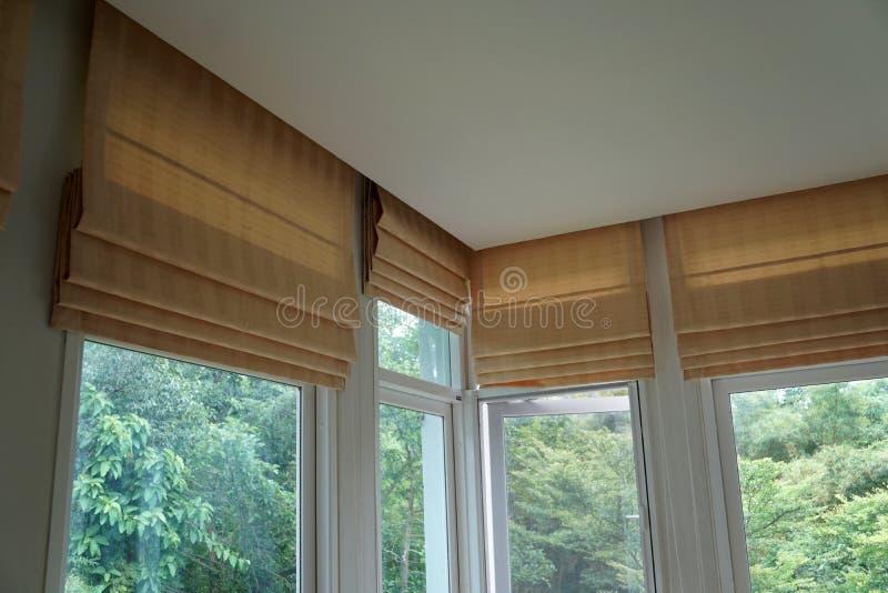 Schatten-Vorhang- und Schattenbaumwaldgebirgshintergrund Browns römischer blinder stockbild