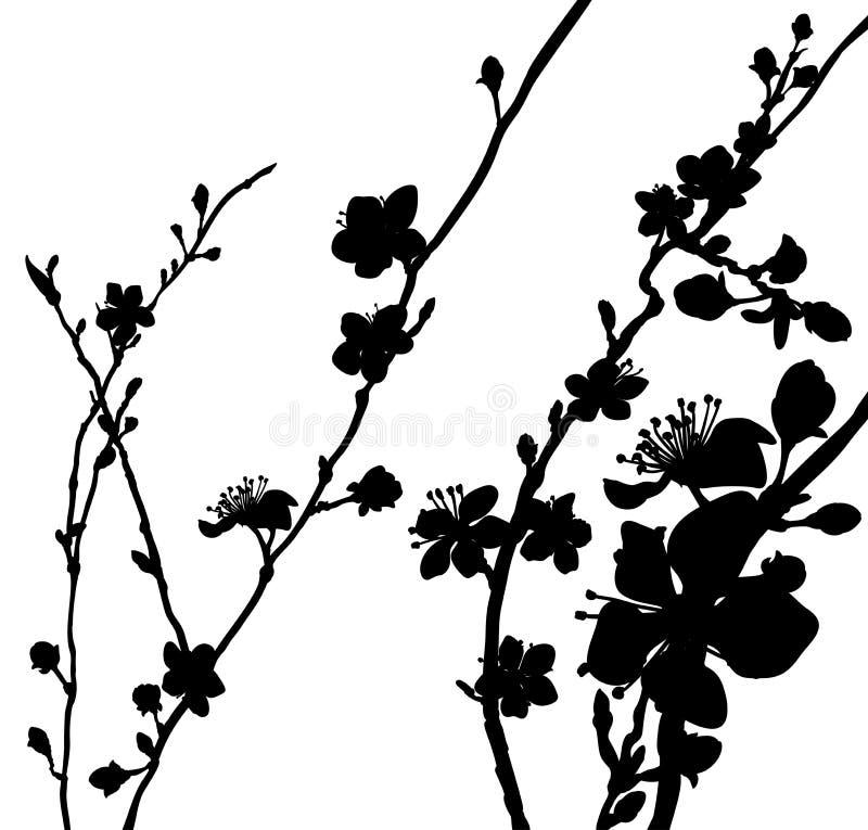 Schattenbild-Blüte blüht Hintergrund-Muster stock abbildung