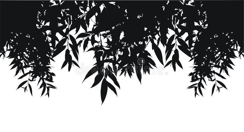Schattenbild der Blätter stockfoto