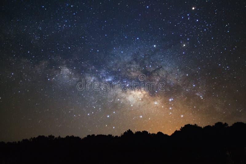 Schattenbild der Kiefers und der Milchstraßegalaxie bei Phu Hin Rong Kiloliter stockbild