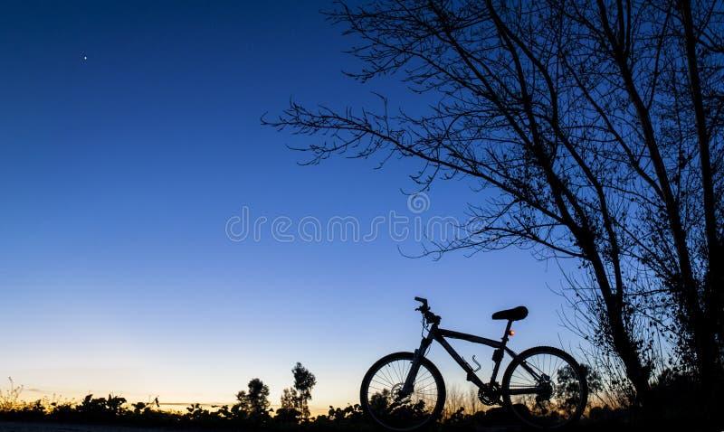 Schattenbild der Mountainbike an Sonnenuntergang nder Baum auf blauem Himmel lizenzfreies stockbild