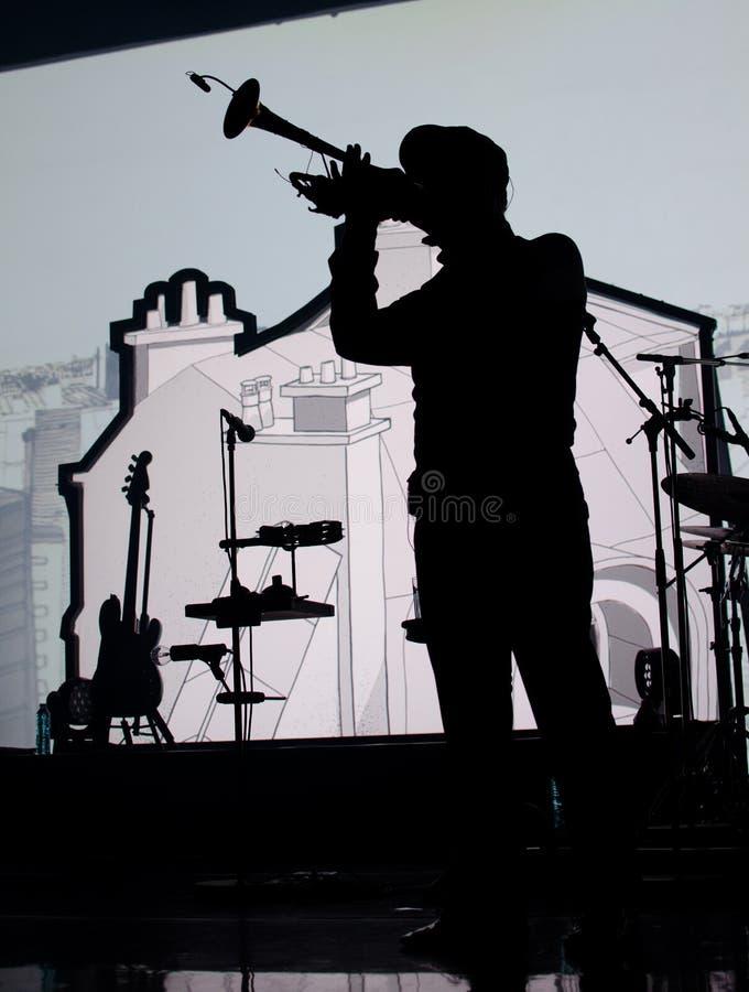 Schattenbild des Musikers lizenzfreies stockfoto