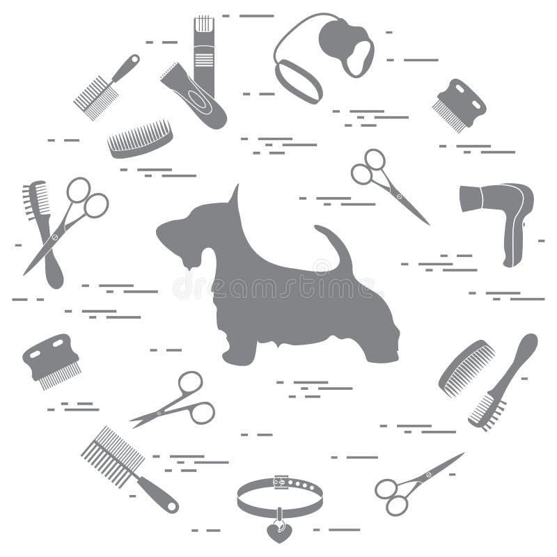 Schattenbild des schottischen Terriers, Kämme, Kragen, Leine, Rasiermesser, Haartrockenes lizenzfreie abbildung