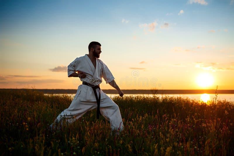Schattenbild des sportiven Manntrainingskarate auf dem Gebiet bei Sonnenaufgang lizenzfreie stockfotos
