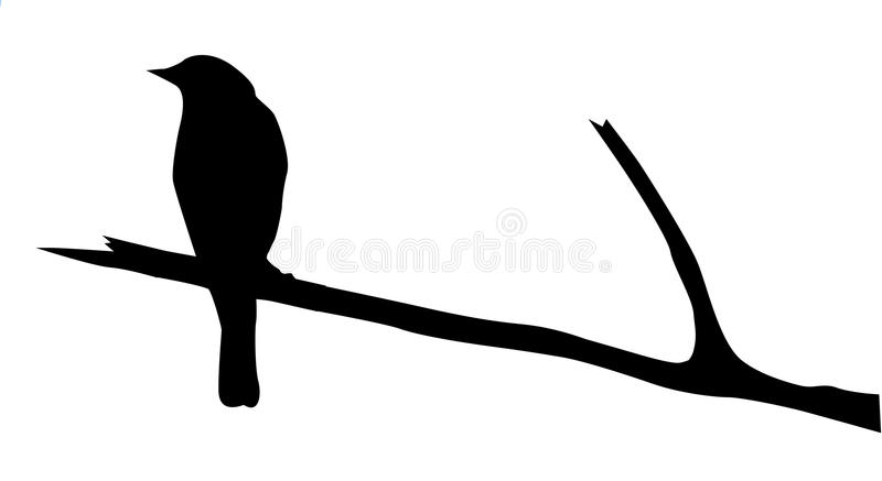Schattenbild des Vogels lizenzfreie abbildung