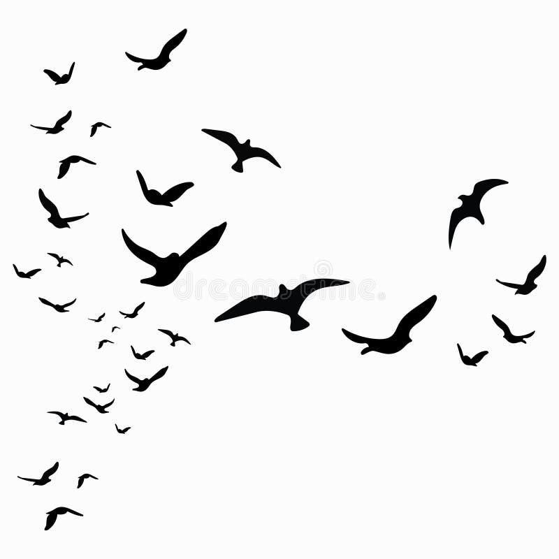 Schattenbild einer Menge der Vögel Schwarze Konturen von Fliegenvögeln stock abbildung
