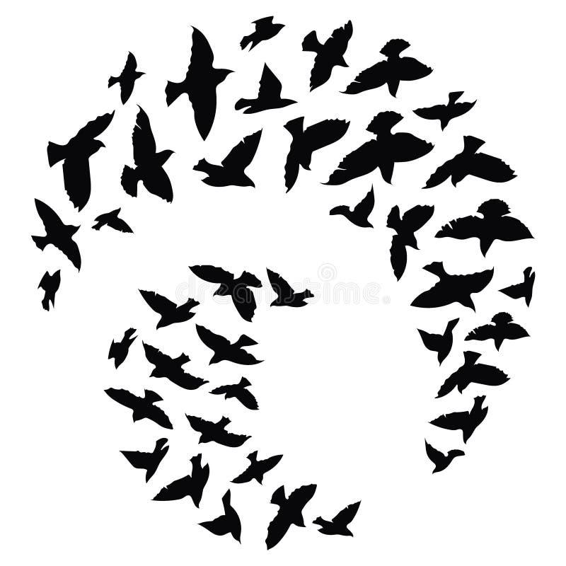 Schattenbild einer Menge der Vögel Schwarze Konturen von Fliegenvögeln Fliegentauben tätowierung lizenzfreie abbildung