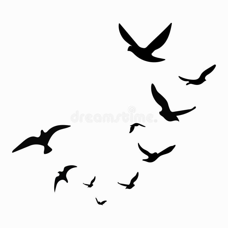 Schattenbild einer Menge der Vögel Schwarze Konturen von Fliegenvögeln Fliegentauben tätowierung Lokalisierte Gegenstände auf Wei vektor abbildung