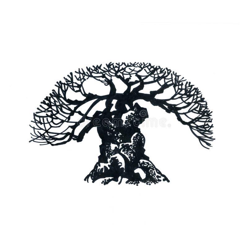 Schattenbild eines alten Baums lizenzfreies stockfoto