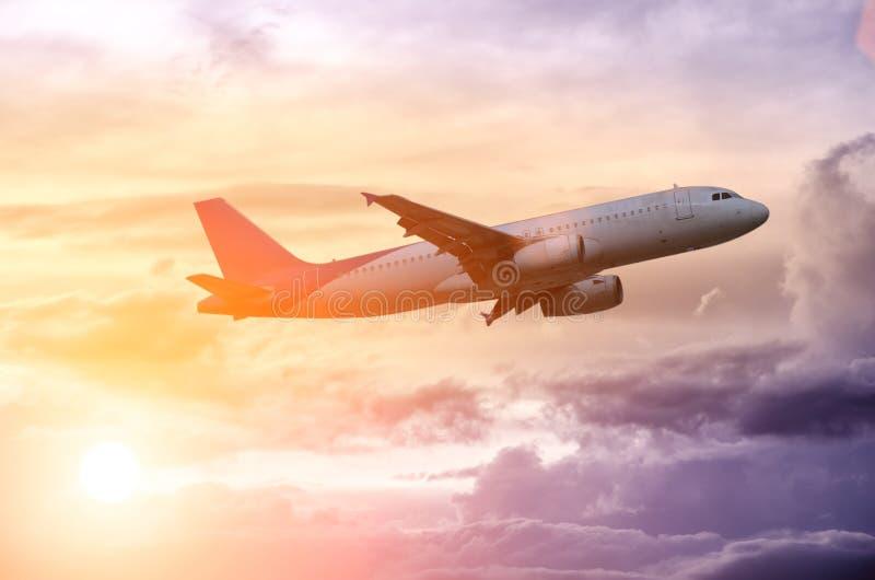 Schattenbild eines flachen Fliegens im schönen Sonnenuntergang stockbild