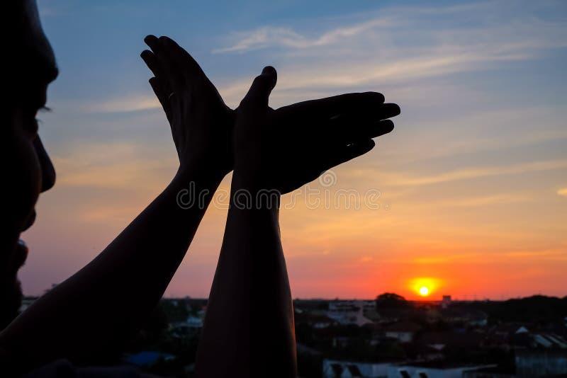 Schattenbild eines Handzeichens mögen Vogelfliegen stockbilder