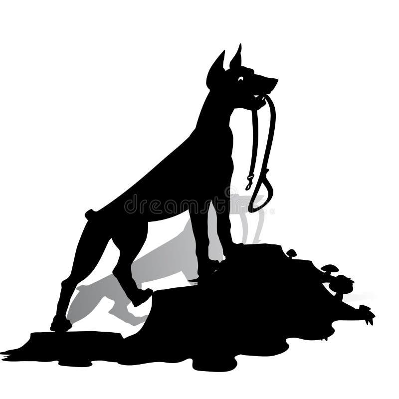 Schattenbild eines Hundedobermann Pinscher hält eine Leine und schaut lizenzfreie abbildung