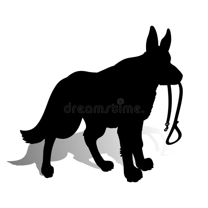 Schattenbild eines Hundeschäferhunds, der eine Leine, auf einem Whit hält lizenzfreie abbildung