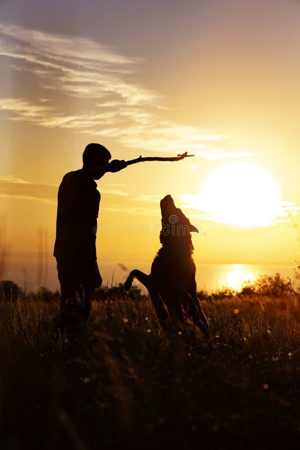 Schattenbild eines jungen Mannes, der mit inländischem Haustier auf einem Gebiet bei Sonnenuntergang spielt, Hund springt für die stockbild