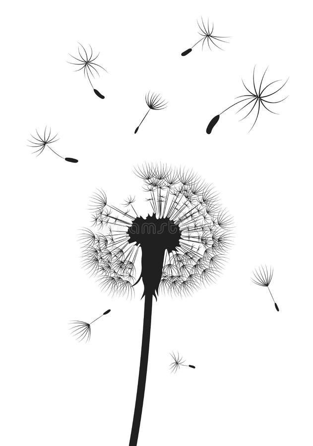 Schattenbild eines Löwenzahns mit Fliegensamen Schwarze Kontur eines Löwenzahns Schwarzweißabbildung einer Blume vektor abbildung