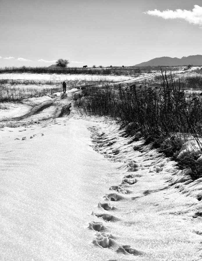 Schattenbild eines Mannes, der durch eine schneebedeckte Landschaft geht stockfotografie