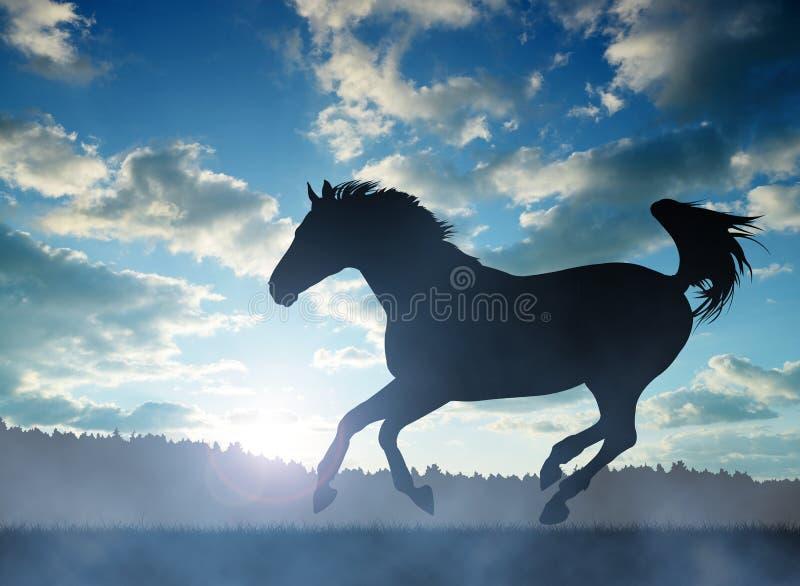 Schattenbild eines Pferds im Galopp stockfoto