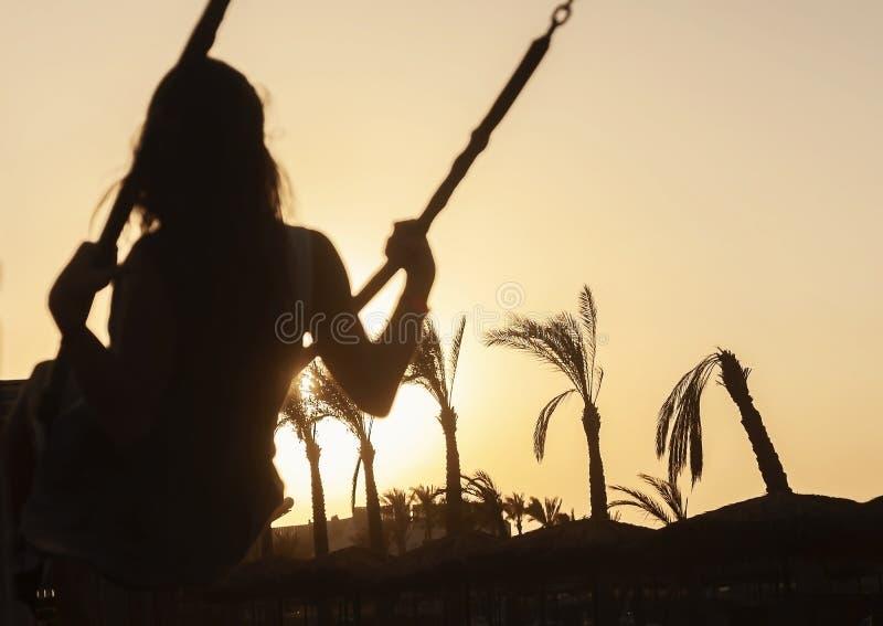 Schattenbild eines Reitens des jungen Mädchens auf einem Schwingen bei Sonnenuntergang auf einer Rückseite lizenzfreie stockfotografie