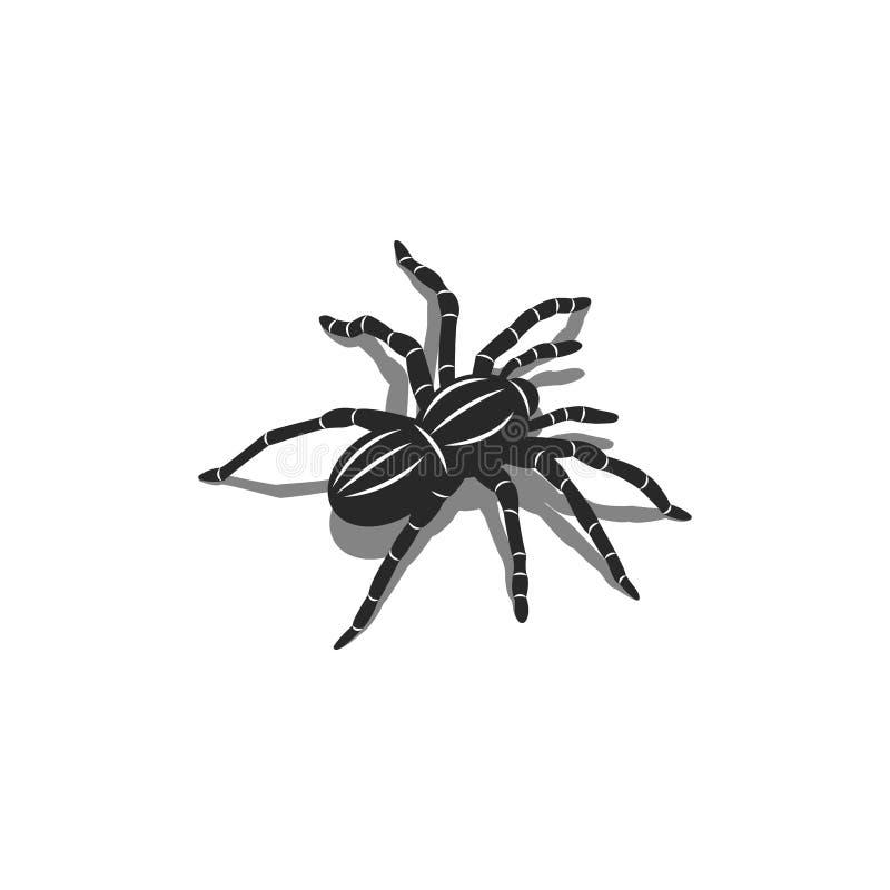 Schattenbild eines Spinnentarantelinsekts in der isometrischen Form mit Schatten, Entwurf der Tätowierung 3D lizenzfreie abbildung