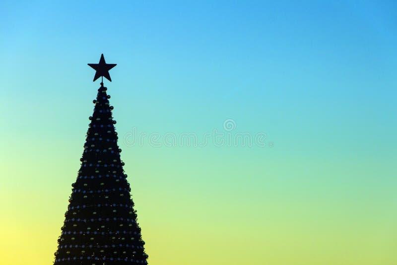 Schattenbild eines verzierten Weihnachtsbaums mit einem fünf-spitzen Stern auf dem Gipfel vor dem hintergrund des sonnigen Himmel lizenzfreies stockbild