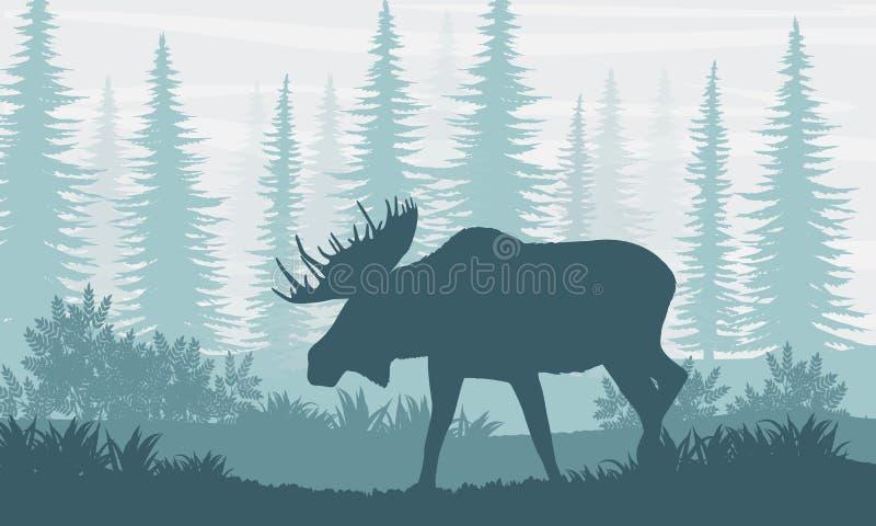 Schattenbild Elche mit großen Hörnern auf dem Hintergrund von kanadischen Tannenbäumen stock abbildung