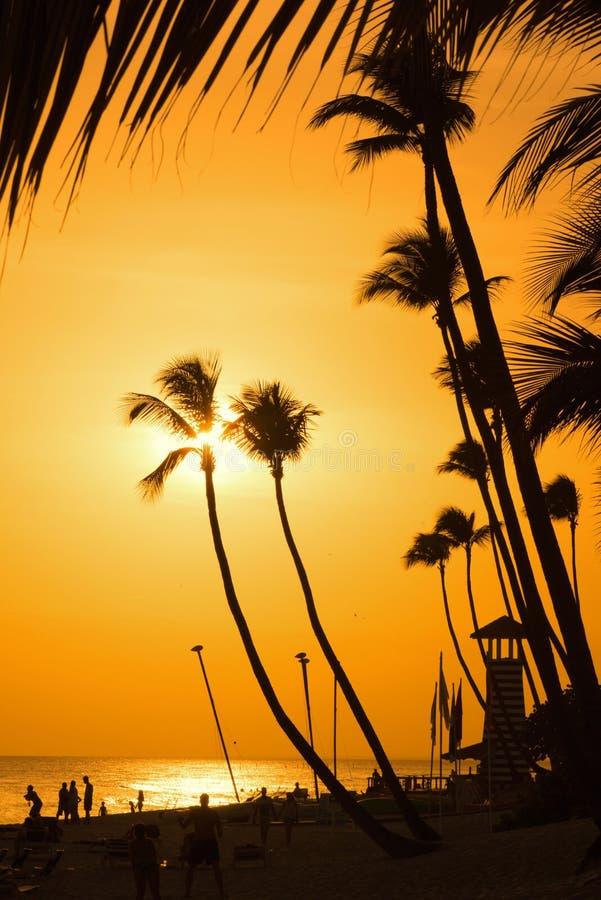 Schattenbild mit zwei Palmen auf tropischem Strand des Sonnenuntergangs lizenzfreies stockbild