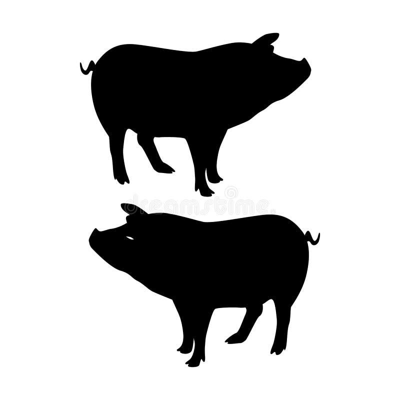 Schattenbild-Schwein, auf weißem Hintergrund, lizenzfreie stockfotos