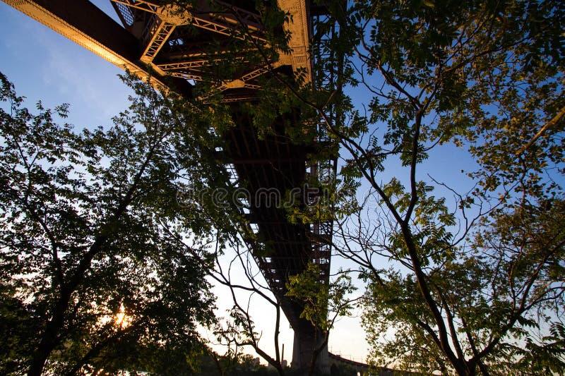 Schattenbild von Bäumen unter der Höllen-Tor-Brücke stockbilder