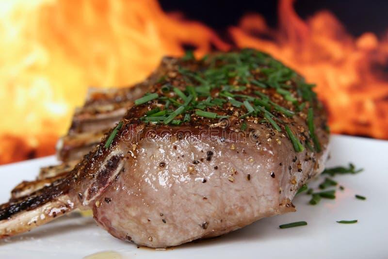 Schattenbild von Sommergarten BBQ getrennt gegen Feuer lizenzfreie stockfotos