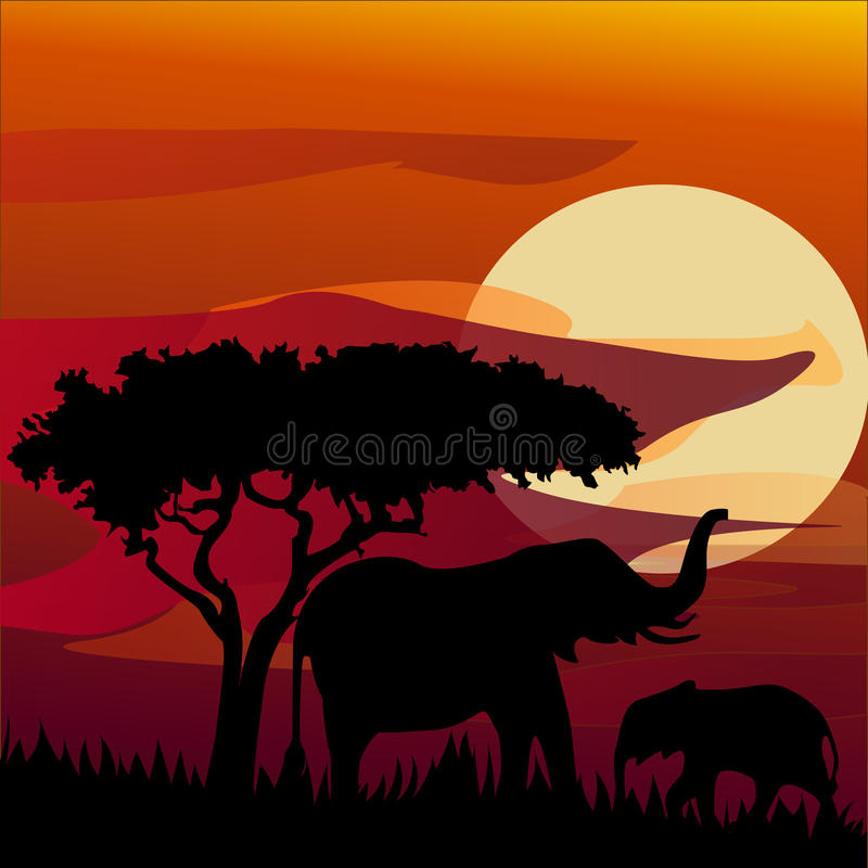 Schattenbildansicht des Elefanten bei Sonnenuntergang stock abbildung